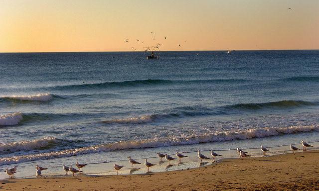 Пляжи Алассио