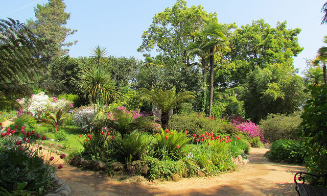 Ботанический сад Хиллера