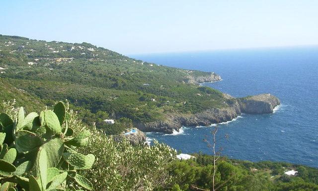Природа Капри