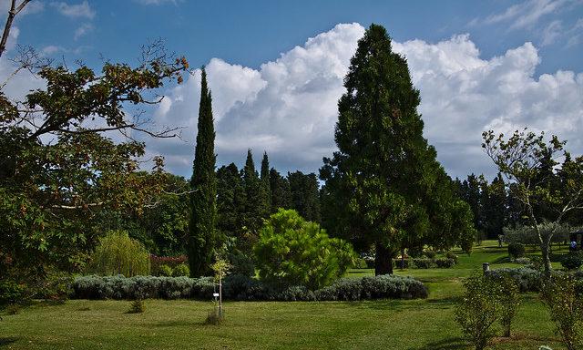 Пейзажи на острове Бриони